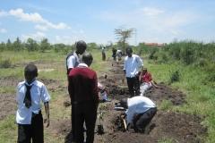 Organix team support Kanani school in Watamu during tree planting exercise