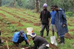 Tree planting in Arusha, Tanzania